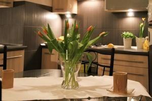 Ceny, powierzchnie czyli jakie mieszkania ostatnio kupujemy